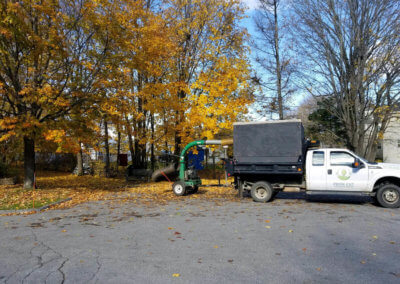 Leaf Removal in Maine
