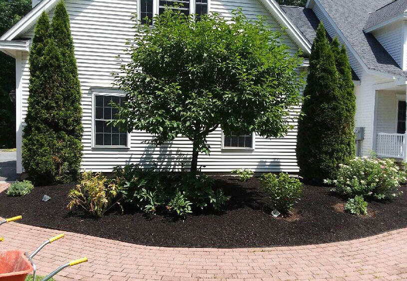 Maine Landscaping Services
